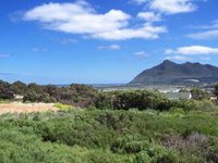 Table Mountain National Park Op Cape Peninsula